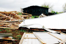 "<div class=""source""></div><div class=""image-desc"">This barn was one of four owned by Asa Phillips that was knocked down by a tornado.</div><div class=""buy-pic""><a href=""http://web2.lcni5.com/cgi-bin/c2newbuyphoto.cgi?pub=033&orig=Asa-Phillips2.jpg"" target=""_new"">Buy this photo</a></div>"