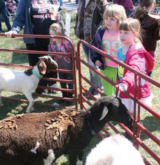 "<div class=""source"">John Whitlock </div><div class=""image-desc"">Anna and Alyssa Gregory check out the animals at the petting zoo.</div><div class=""buy-pic""><a href=""http://web2.lcni5.com/cgi-bin/c2newbuyphoto.cgi?pub=033&orig=IMG_8419.jpg"" target=""_new"">Buy this photo</a></div>"