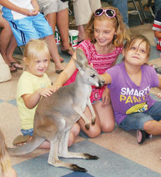 """<div class=""""source"""">John Whitlock</div><div class=""""image-desc"""">Students with the Owen County Public Library's summer reading program got to see a kangaroo up close as part of their reward.</div><div class=""""buy-pic""""><a href=""""/photo_select/5329"""">Buy this photo</a></div>"""