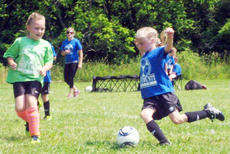 """<div class=""""source""""></div><div class=""""image-desc"""">Macie Chappell of the Wildcats dribbles the ball around the Clovers.</div><div class=""""buy-pic""""><a href=""""/photo_select/7347"""">Buy this photo</a></div>"""