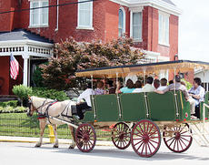"""<div class=""""source""""></div><div class=""""image-desc"""">A horse-drawn carriage makes its way down North Main Street Friday during the guided carriage tour through Owenton.</div><div class=""""buy-pic""""><a href=""""/photo_select/3424"""">Buy this photo</a></div>"""
