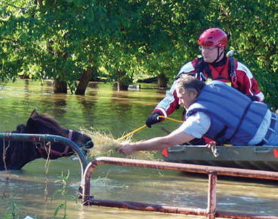 Rescuers save a horse during the spring floods of 2010