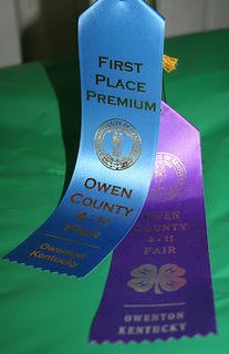 Owen County Fair Exhibit