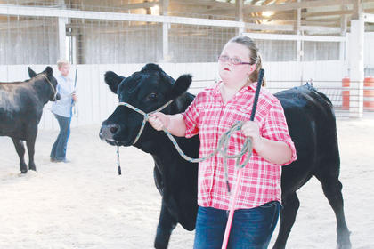Hayden Colligan showing her heifer during the 4-H/FFA Beef Show Thursday at the fair.