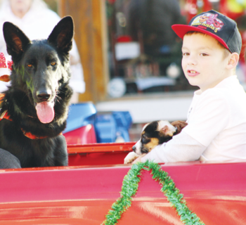 The Grand Paws Search Dog entry in the parade included four-legged friends.