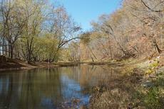 "<div class=""source""></div><div class=""image-desc"">Eagle Creek running through our Owen County (KY) farm, Oct., 2010.</div><div class=""buy-pic""><a href=""/photo_select/3933"">Buy this photo</a></div>"