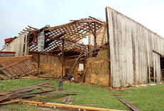 "<div class=""source""></div><div class=""image-desc"">This barn along US 127 was damaged Tuesday evening when winds as strong as 65 mph blew through Owen County. </div><div class=""buy-pic""><a href=""/photo_select/11492"">Buy this photo</a></div>"