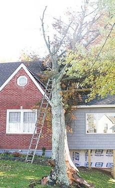"""<div class=""""source""""></div><div class=""""image-desc"""">A tree fell onto Peggy Tisch's home during the early morning hours Friday after winds of 51 mph were reported in Owenton.  </div><div class=""""buy-pic""""><a href=""""/photo_select/10745"""">Buy this photo</a></div>"""